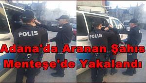 Adana 'da Aranan Şahıs Menteşe 'de Yakalandı
