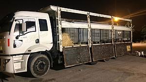 Adana'da 14,5 Ton Kaçak Akaryakıt Ele Geçirildi