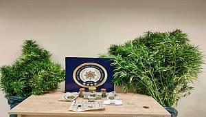 Narkotik Suçlarla Mücadele Şube Müdürlüğümüzce düzenlenen operasyonlarda 4 şahıs yakalandı