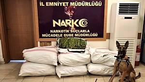 Osmaniye Emniyet Müdürlüğü Bir Tır'da çuvallarla uyuşturucu ele geçirdi