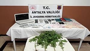 Alanya'da yasadışı bahis operasyonunda 6 kişi gözaltına alındı