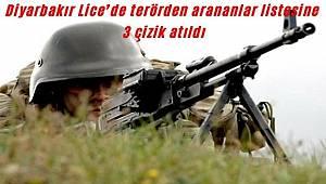 Diyarbakır Lice'de terörden arananlar listesine 3 çizik atıldı