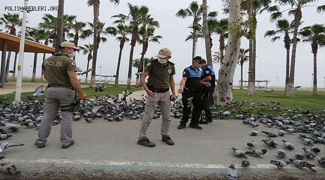 Mersin'de Polis Sokak Hayvanlarını Unutmadı