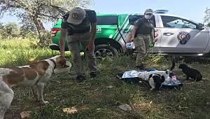 Mersin'de polisler tam kapanmada sokak hayvanlarını besledi