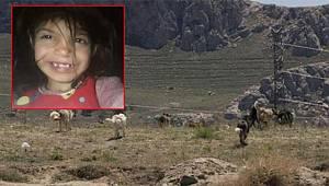 Van'da Köpeklerin Saldırısına uğrayan 6 yaşındaki Ruken hayatını kaybetti