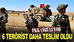 PKK'dan kaçan 6 örgüt mensubu teslim oldu