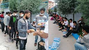 Tokat'ta TIR'da Saman Balyalarının arkasına gizlenmiş 69 düzensiz göçmen yakalandı