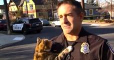Polis memurunun üzerine atlayan kedi sosyal medyada yoğun ilgi gördü - Haber